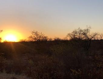 Met zonsopkomst rijden we het Kruger Park in
