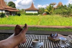 Koffie drinken met uitzicht op het rijstveld in Kampoeng Joglo Ijen