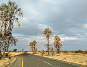 Road-to-Gweta-Botswana