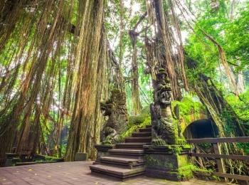 Tomb Raider gevoel in the Monkey Forest