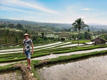 De prachtige Jatiluwih rijstterrassen