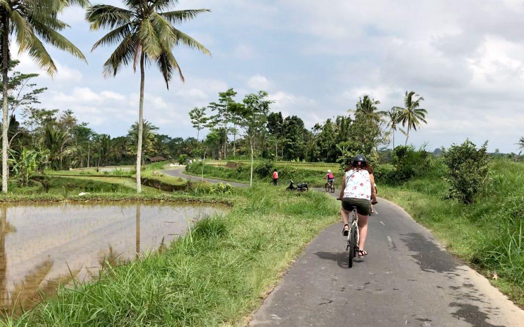 Dag 5 – Fietsen door de rijstvelden bij Tegalalang