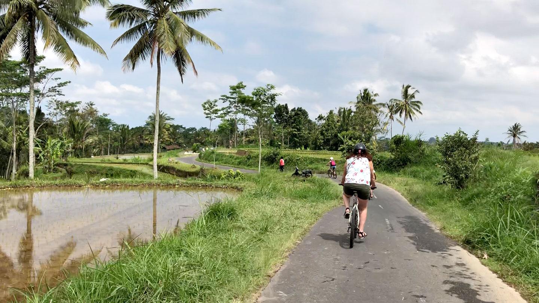 Fietsen door de rijstvelden bij Telanggalang