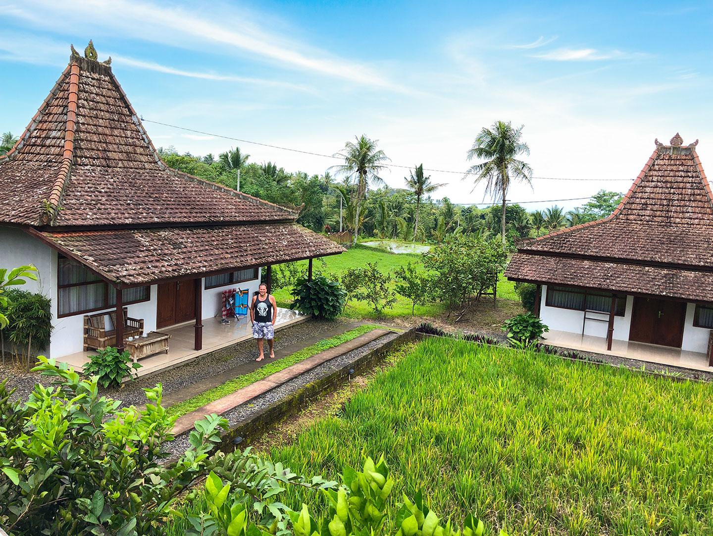Een bungalow bij een rijstveld bij Kampoeng Joglo Ijen