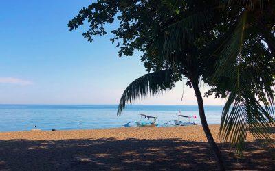 Dag 7 – Van Lovina Beach op Bali naar Banyuwangi op Java