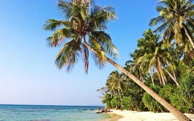 Dag 12 – Een tropisch dagje op Karimunjawa