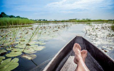 Dag 10 – Mokoro boottocht in de Okavango delta